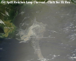 Oil Spill Reaches Loop Current