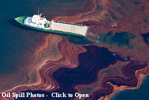 Oil Spill Photos